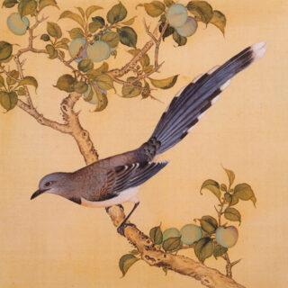 清 余省 临鸟谱14