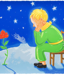 Little Prince and Rose, Shen Jing Dong